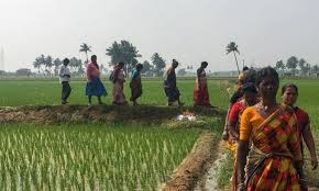 Protest by Dalits against land acquisition crosses 1,000 days
