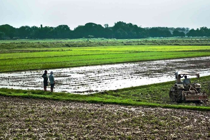 In 12 Years, 11 States Changed Land Ceiling Laws In Favour Of Industry Over Farmers