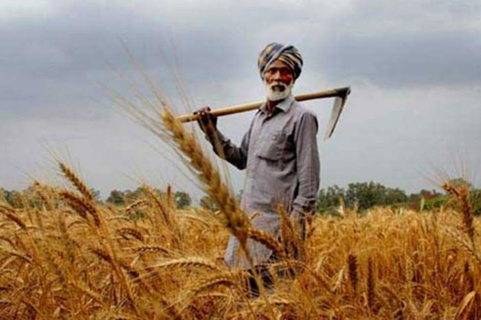 MSP at C2+50%, farmers' need of the hour: AIKS
